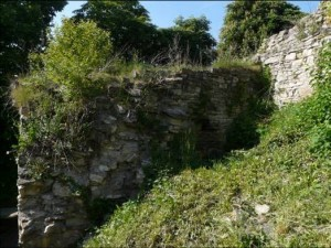 obr. 1 – Košumberk, hrad. Vstupní věž starého hradu před zahájením výzkumu.