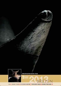 Detail ucha džbánku řivnáčské kultury z Blata